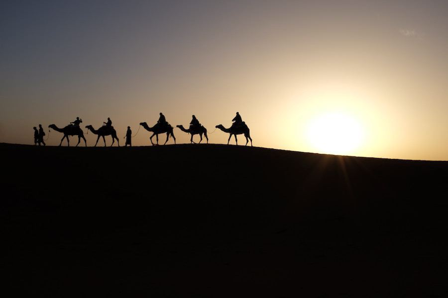 camel riding - Local Attractions