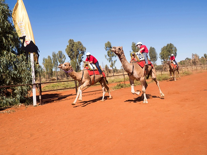 camel cup NT 2019 - Camel Cup - May 2019